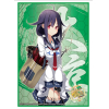 Sleeve Collection HG Vol.806 (Taigei)