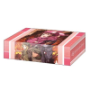 Storage Box Collection Vol.257 (Sword Art Online Alternative Gun Gale Online)