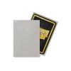 Dragon Shield Sleeves (Standard Matte - Mist)