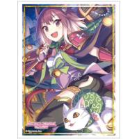 Sleeve Collection HG Vol.2803 (Tamaki)