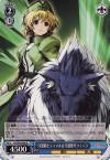 守護騎士シャマル&守護獣ザフィーラ