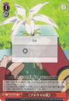 ≪プネウマの花≫